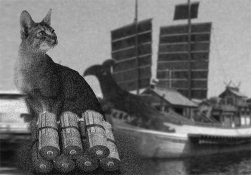 猫と経文.jpg